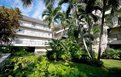 Photo of Admiral Farragut Condo in Coral Gables, FL
