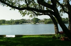 Photo of Hammock Lakes Real Estate in Coral Gables, FL
