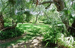 Photo of vacant land/lot in Pinecrest Florida