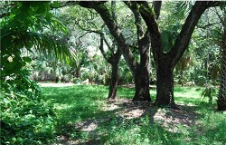 Photo of vacant land/lot in High Pines South Miami Florida
