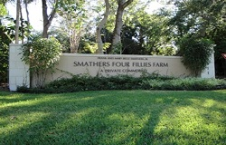 Photo of Smathers Four Fillies Farm Real Estate in Pinecrest, FL