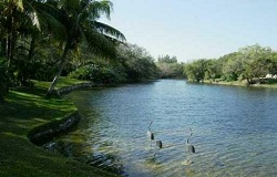 Photo of Snapper Creek Lakes Real Estate in Coral Gables, FL