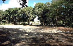 Photo of vacant land/lot in South Miami Florida