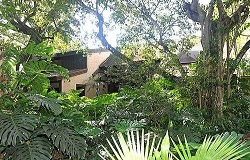 Photo of Tree Top Estates Real Estate in Pinecrest, FL